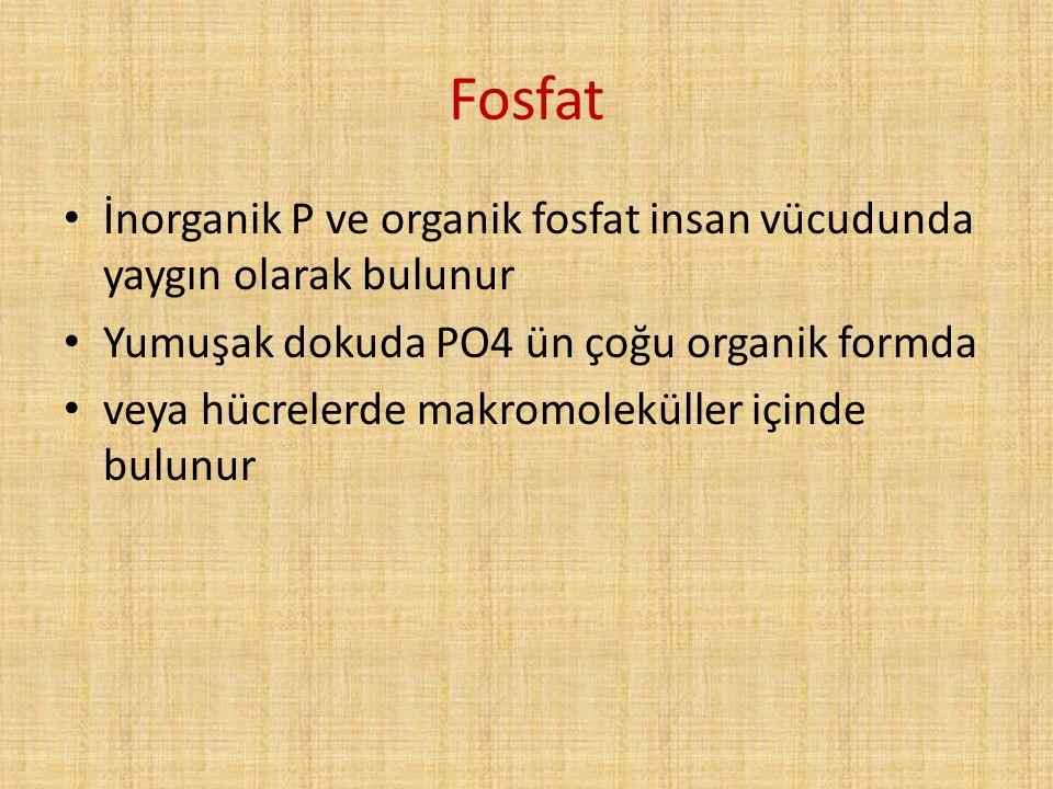 Fosfat İnorganik P ve organik fosfat insan vücudunda yaygın olarak bulunur. Yumuşak dokuda PO4 ün çoğu organik formda.