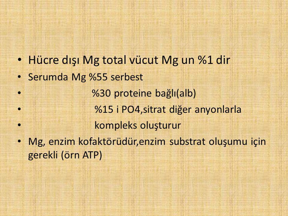 Hücre dışı Mg total vücut Mg un %1 dir