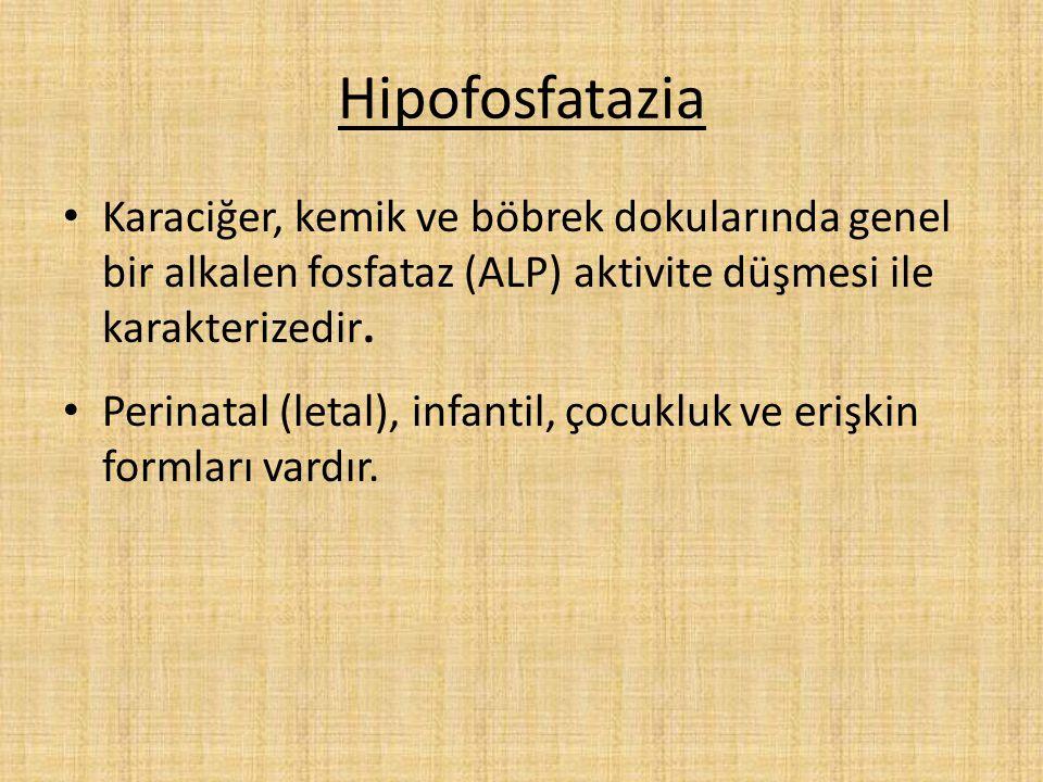Hipofosfatazia Karaciğer, kemik ve böbrek dokularında genel bir alkalen fosfataz (ALP) aktivite düşmesi ile karakterizedir.