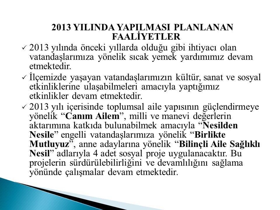2013 YILINDA YAPILMASI PLANLANAN FAALİYETLER
