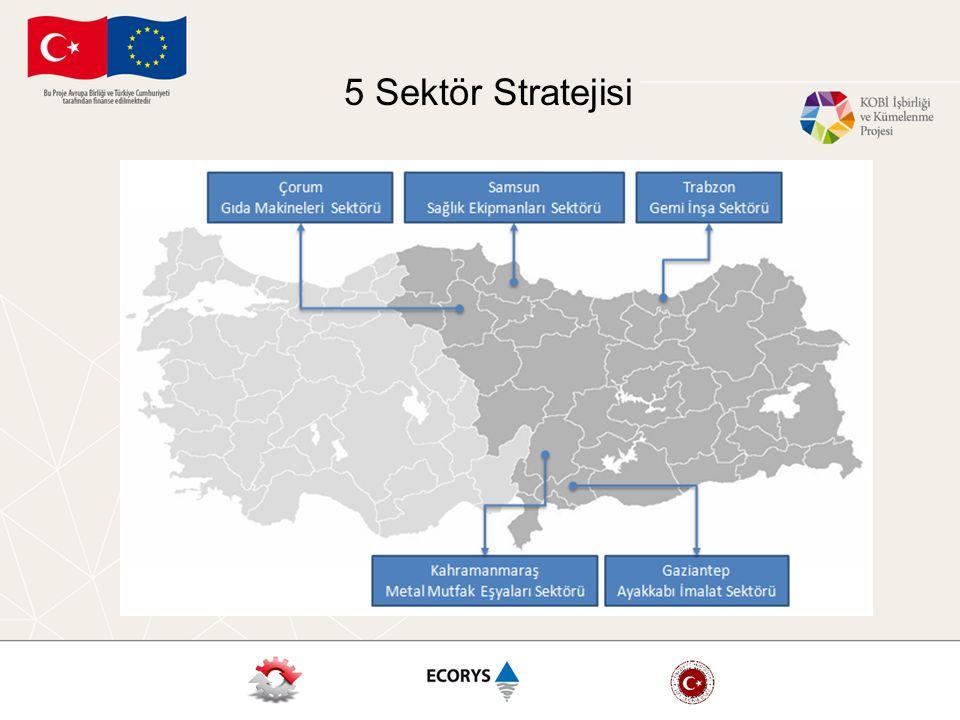 5 Sektör Stratejisi