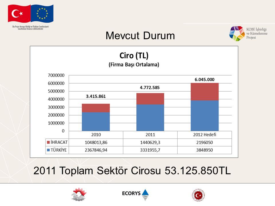 2011 Toplam Sektör Cirosu 53.125.850TL