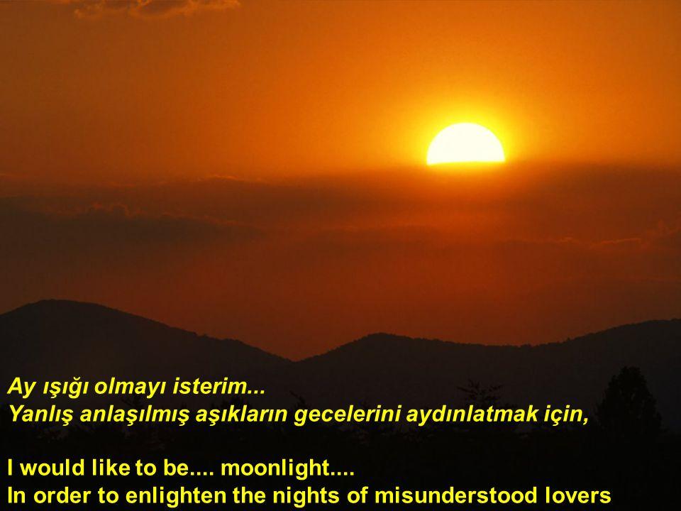 Ay ışığı olmayı isterim...