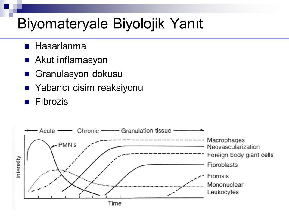 Biyomateryale Biyolojik Yanıt