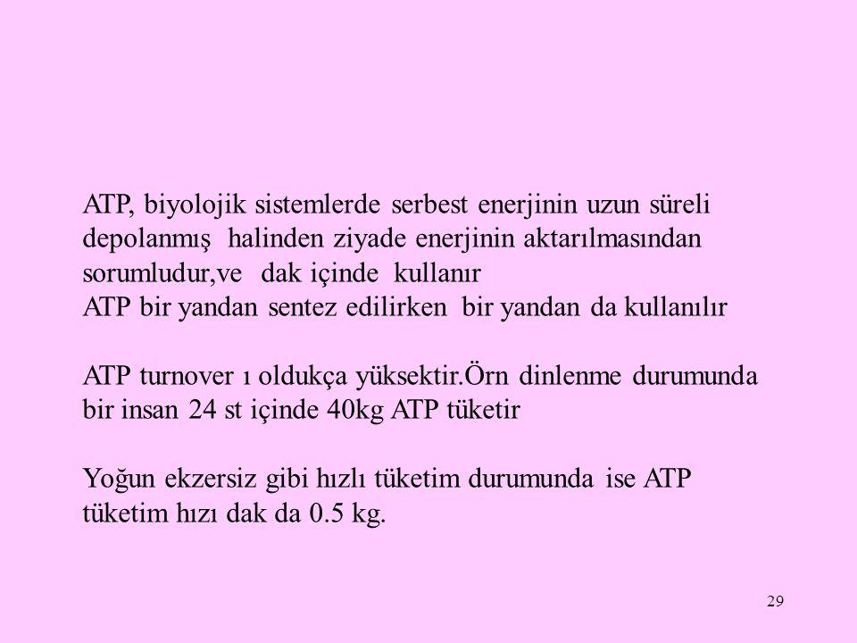 ATP, biyolojik sistemlerde serbest enerjinin uzun süreli depolanmış halinden ziyade enerjinin aktarılmasından sorumludur,ve dak içinde kullanır