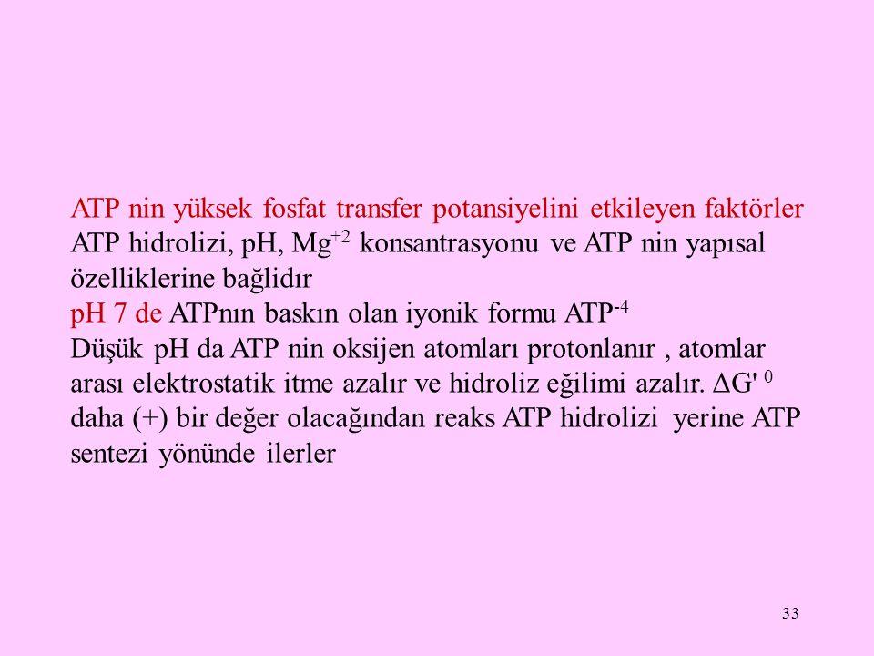 ATP nin yüksek fosfat transfer potansiyelini etkileyen faktörler