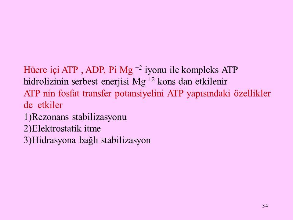 Hücre içi ATP , ADP, Pi Mg +2 iyonu ile kompleks ATP hidrolizinin serbest enerjisi Mg +2 kons dan etkilenir