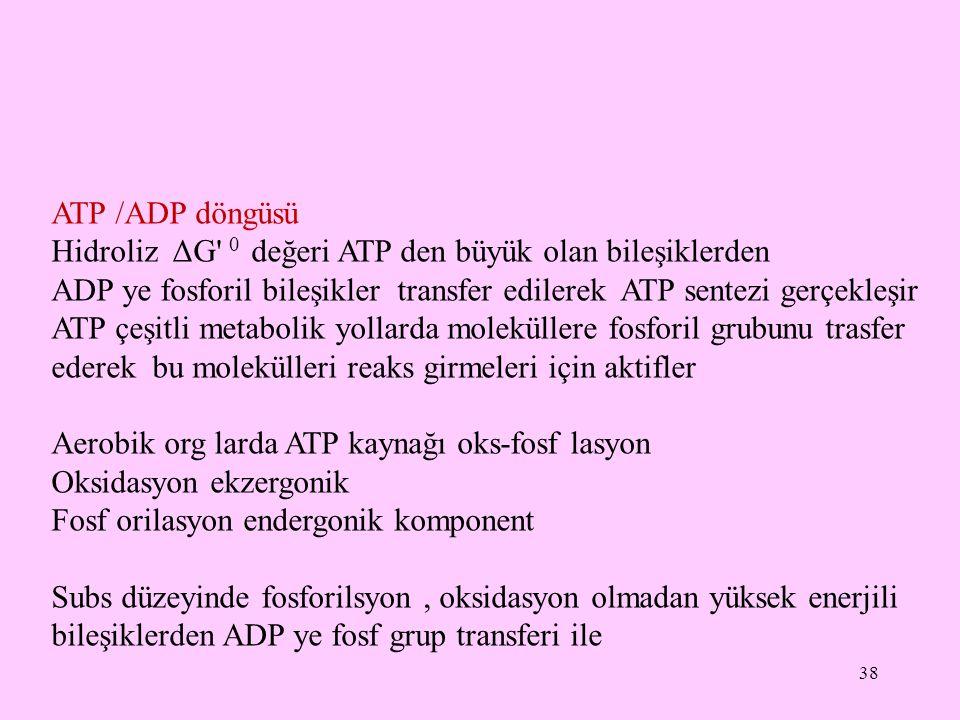 ATP /ADP döngüsü Hidroliz ΔG 0 değeri ATP den büyük olan bileşiklerden. ADP ye fosforil bileşikler transfer edilerek ATP sentezi gerçekleşir.