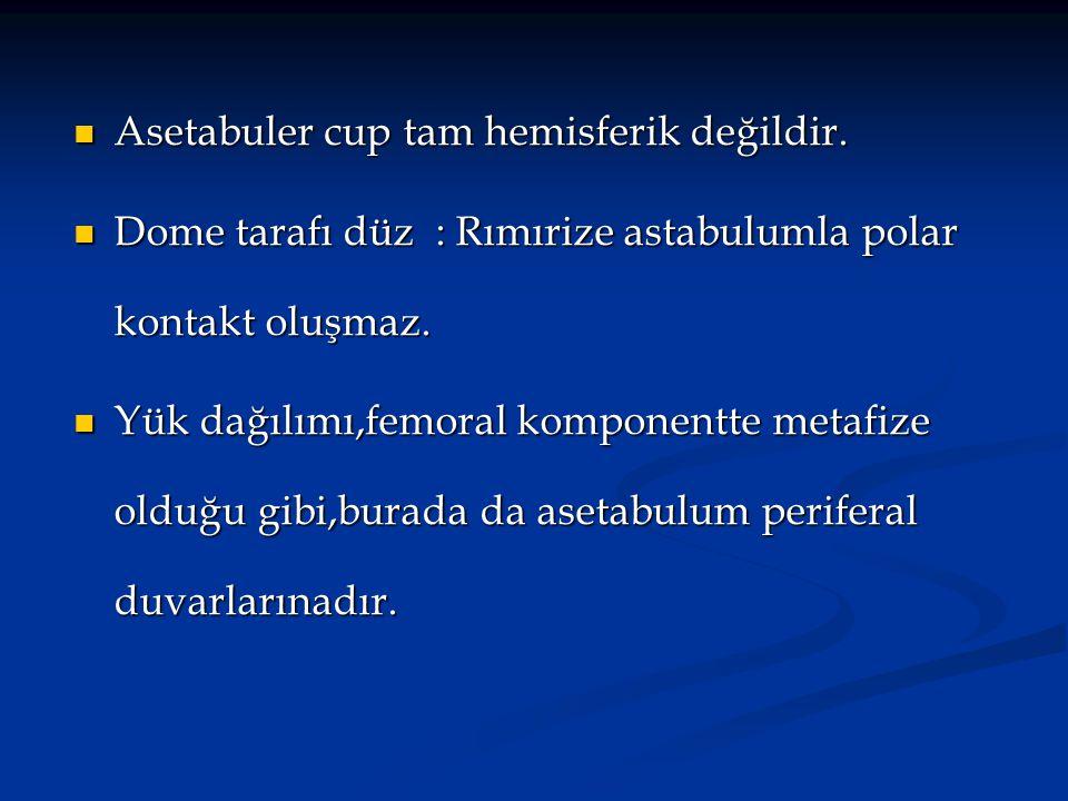Asetabuler cup tam hemisferik değildir.
