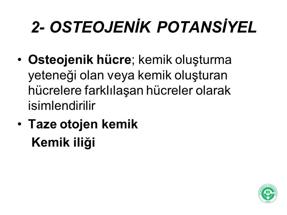2- OSTEOJENİK POTANSİYEL