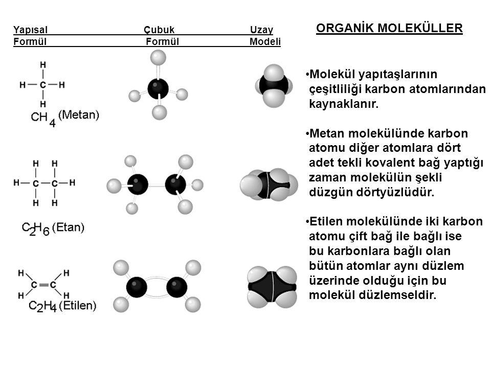Molekül yapıtaşlarının çeşitliliği karbon atomlarından kaynaklanır.