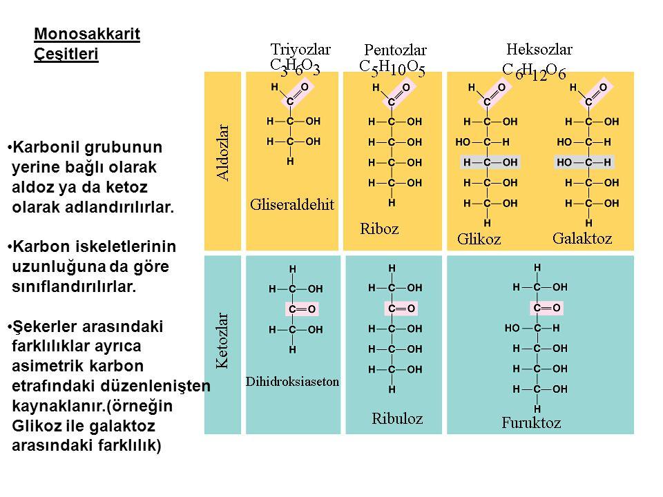 Monosakkarit Çeşitleri. Karbonil grubunun. yerine bağlı olarak. aldoz ya da ketoz. olarak adlandırılırlar.