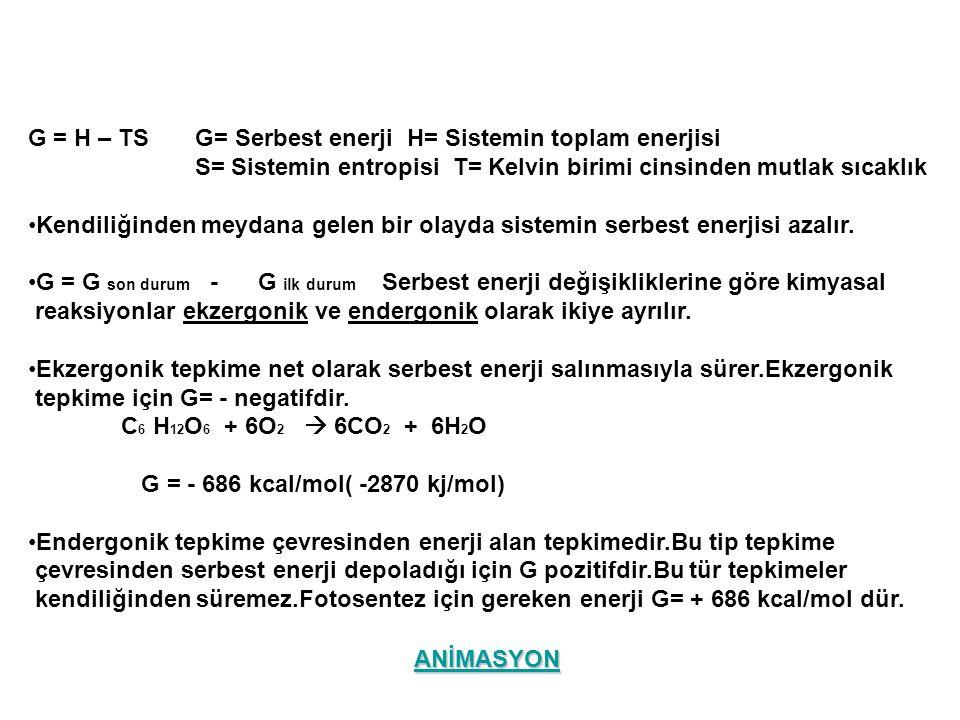 G = H – TS G= Serbest enerji H= Sistemin toplam enerjisi