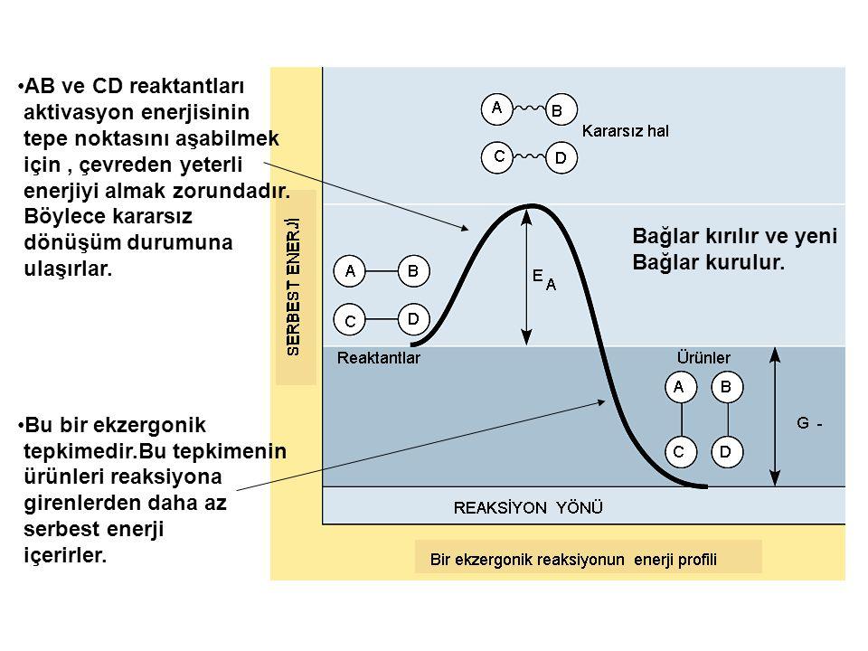 AB ve CD reaktantları aktivasyon enerjisinin. tepe noktasını aşabilmek. için , çevreden yeterli. enerjiyi almak zorundadır.