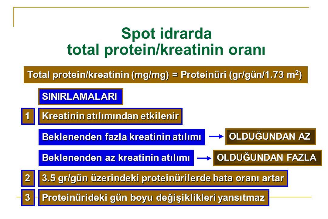Spot idrarda total protein/kreatinin oranı