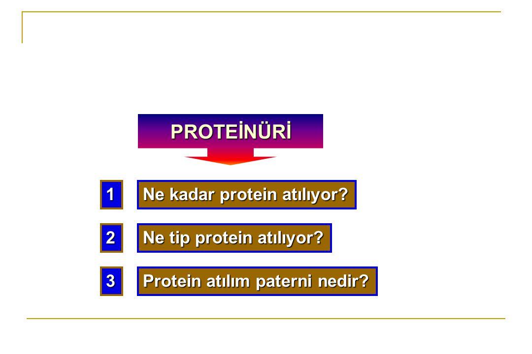PROTEİNÜRİ 1 Ne kadar protein atılıyor 2 Ne tip protein atılıyor 3