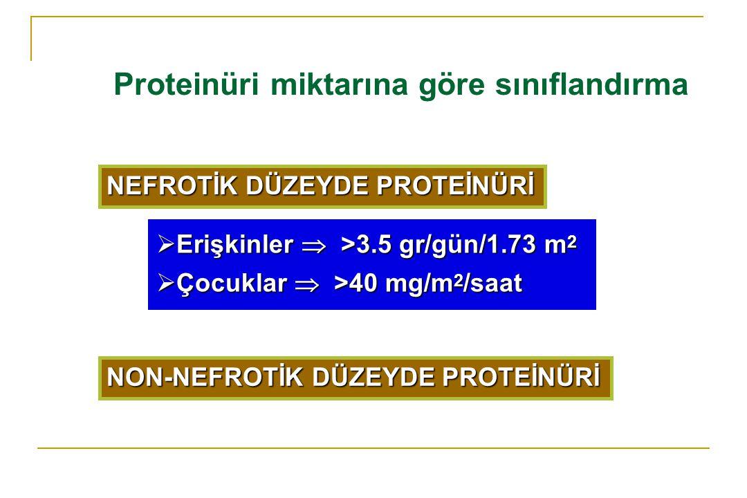 Proteinüri miktarına göre sınıflandırma