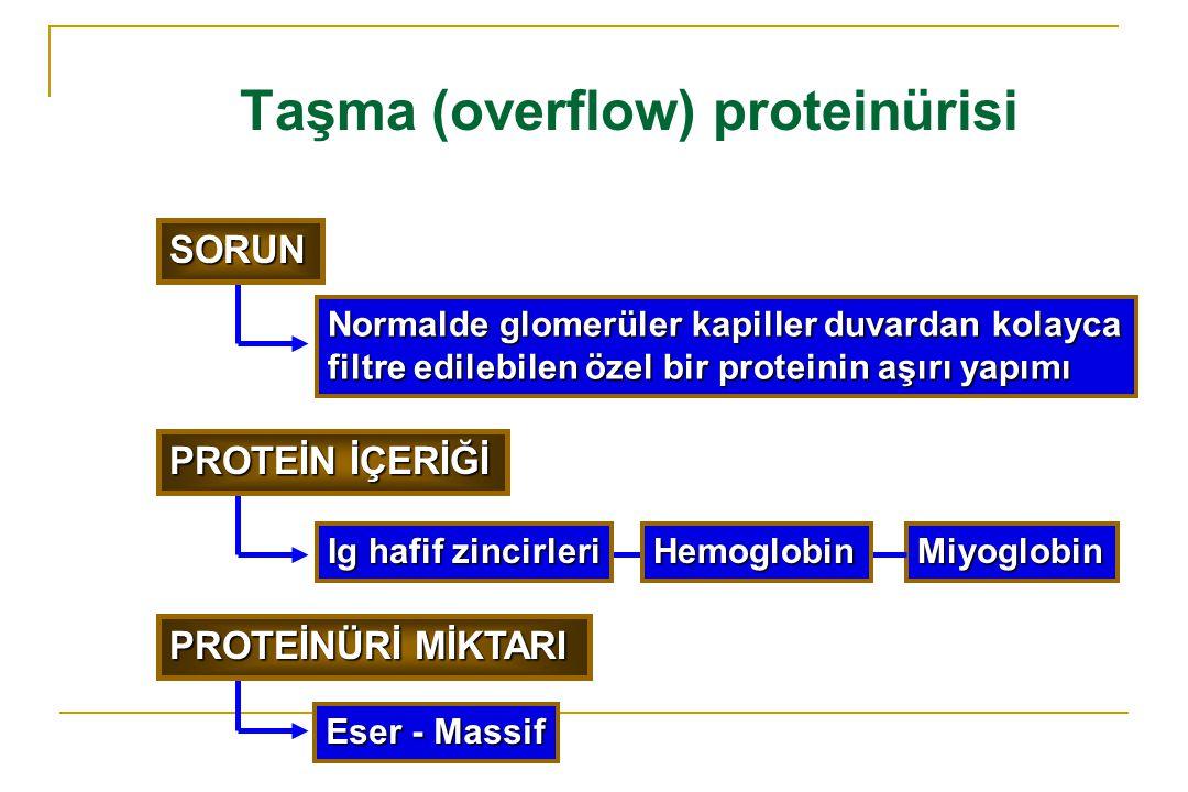 Taşma (overflow) proteinürisi