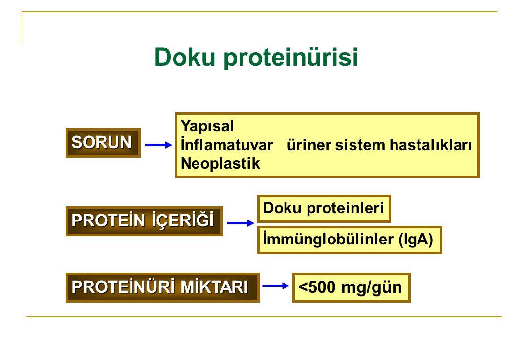 Doku proteinürisi SORUN PROTEİN İÇERİĞİ PROTEİNÜRİ MİKTARI