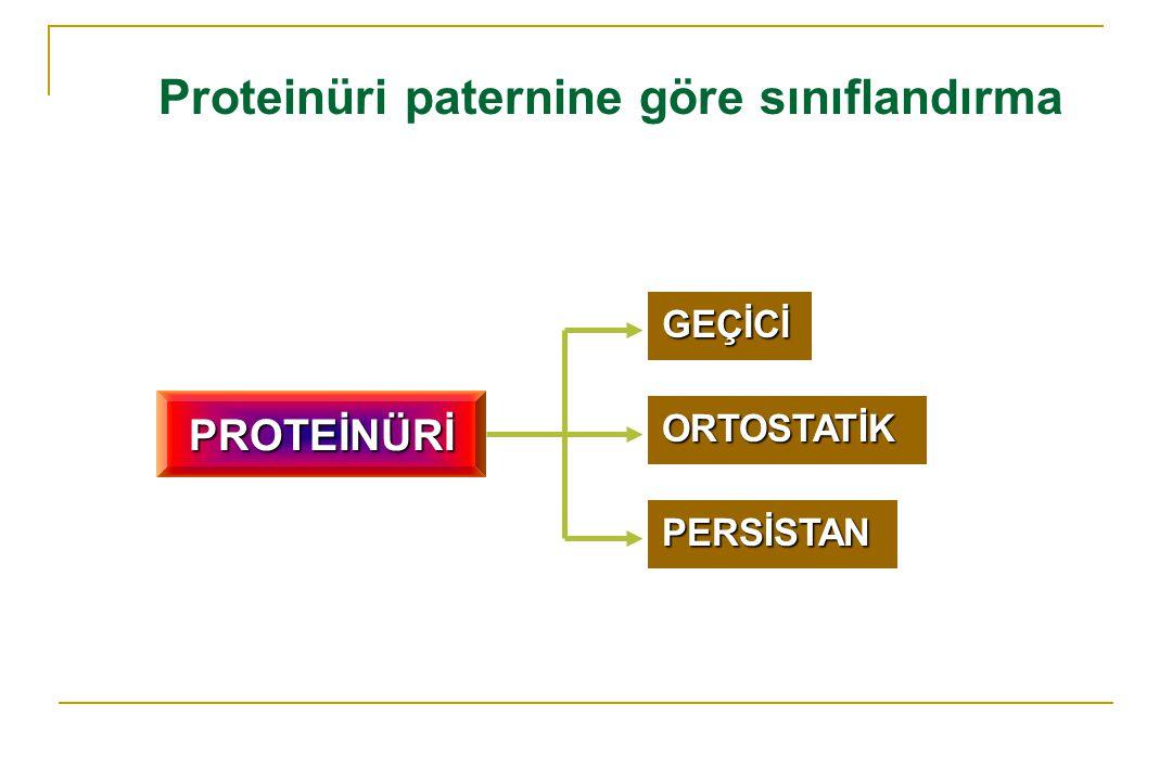 Proteinüri paternine göre sınıflandırma