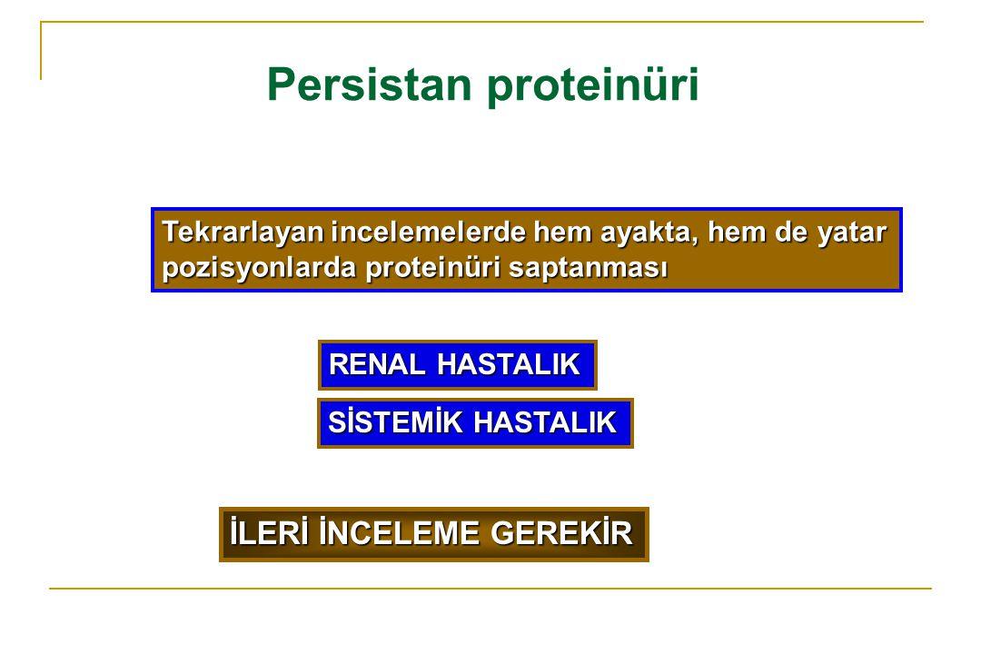 Persistan proteinüri İLERİ İNCELEME GEREKİR