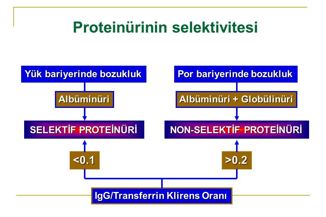 Proteinürinin selektivitesi