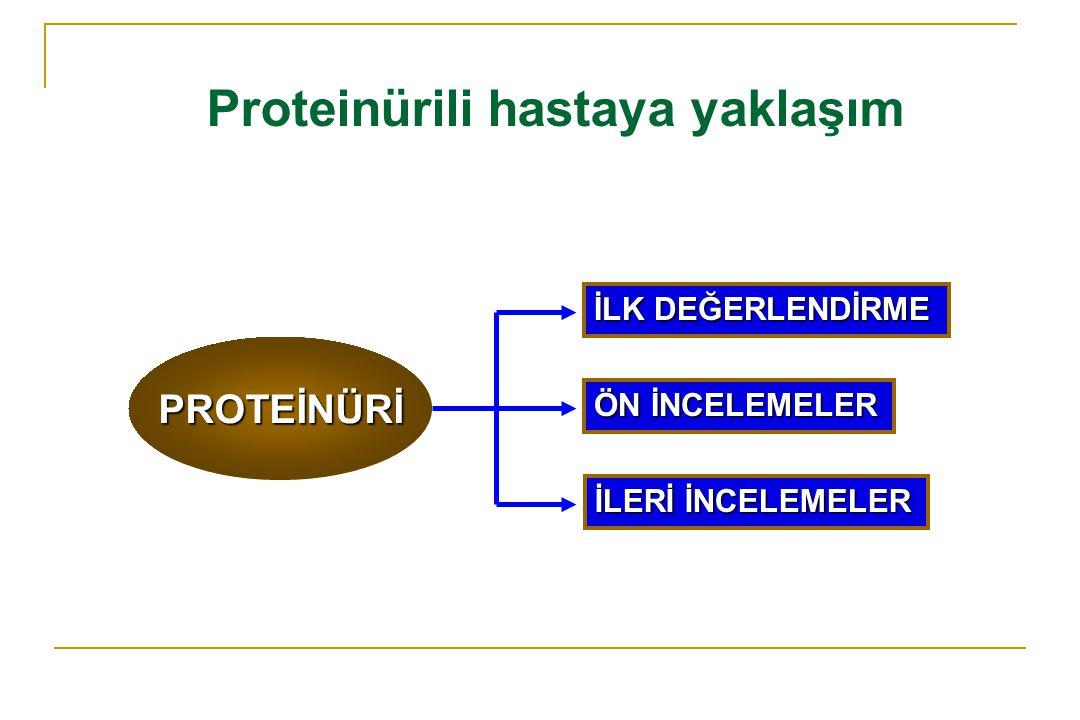 Proteinürili hastaya yaklaşım