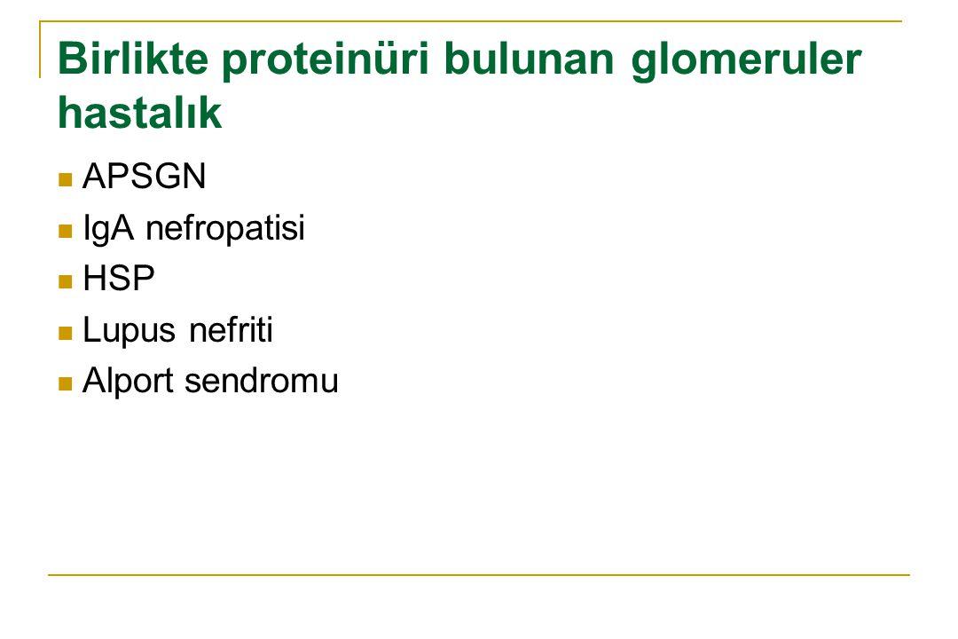 Birlikte proteinüri bulunan glomeruler hastalık