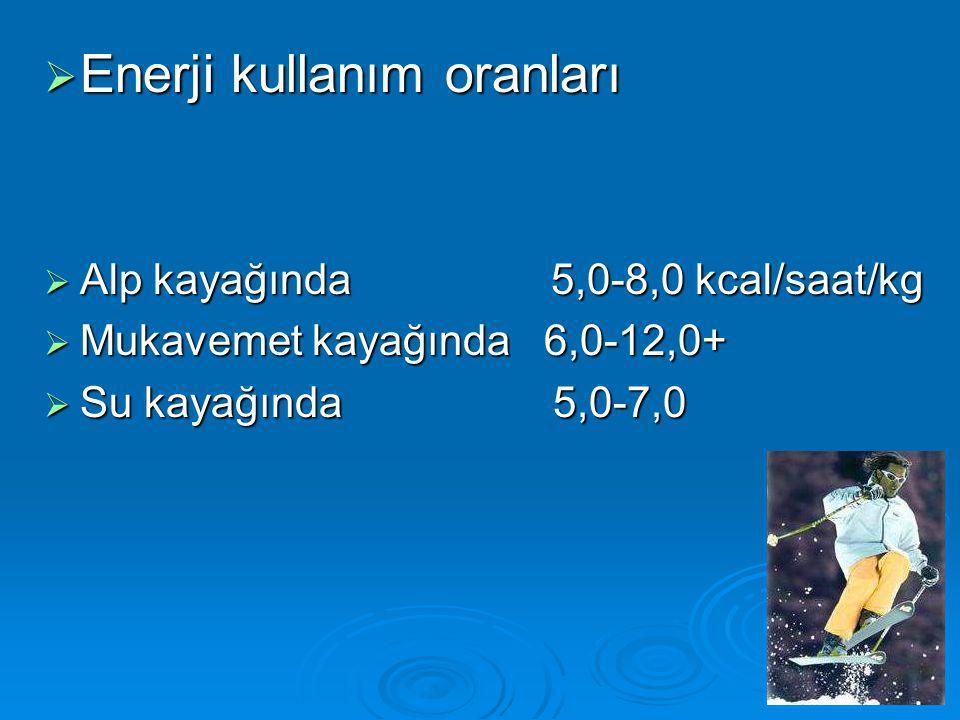 Enerji kullanım oranları