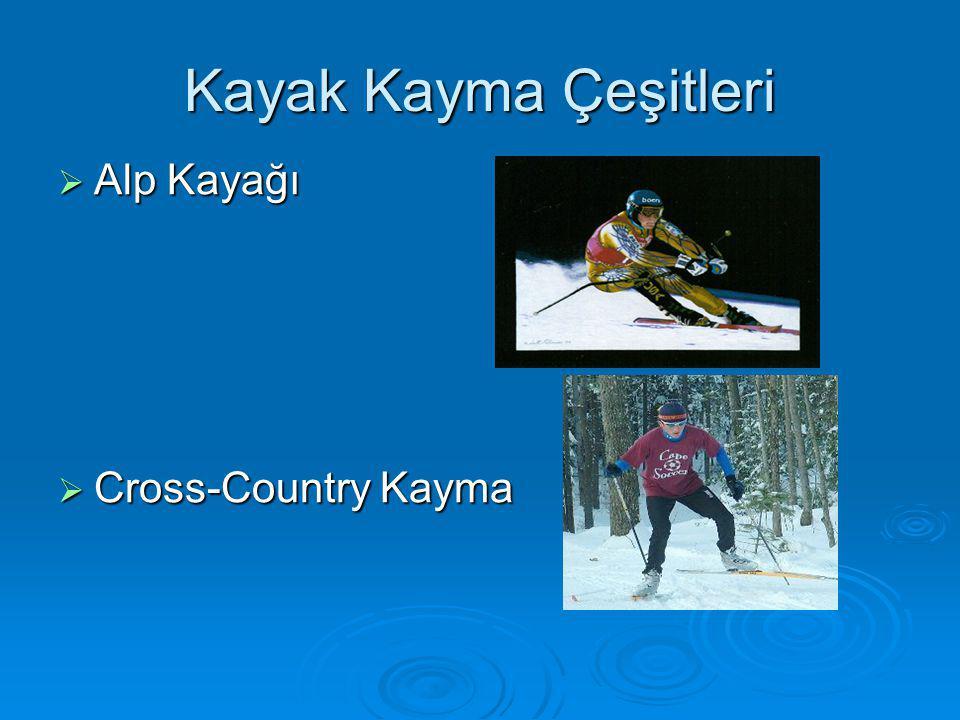 Kayak Kayma Çeşitleri Alp Kayağı Cross-Country Kayma