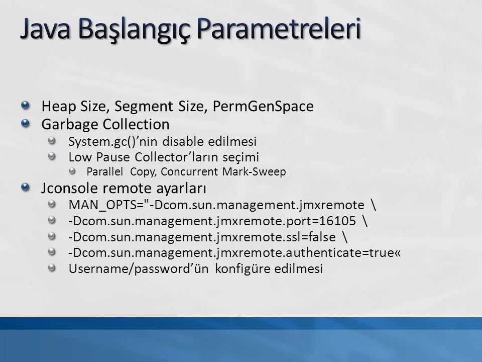 Java Başlangıç Parametreleri