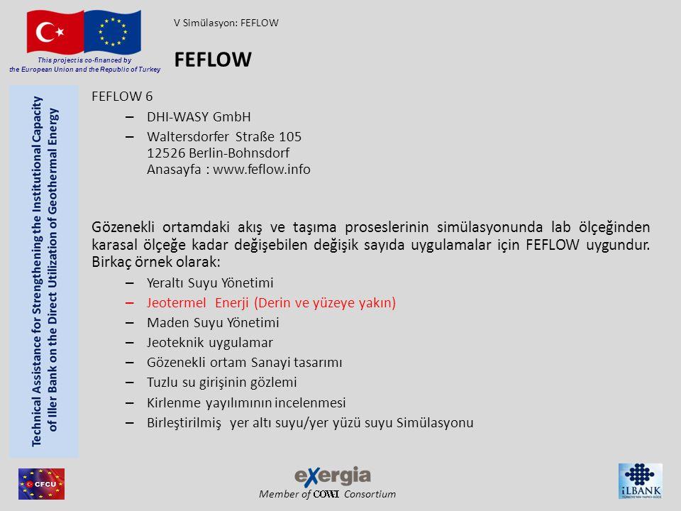 V Simülasyon: FEFLOW FEFLOW. FEFLOW 6. DHI-WASY GmbH. Waltersdorfer Straße 105 12526 Berlin-Bohnsdorf Anasayfa : www.feflow.info.