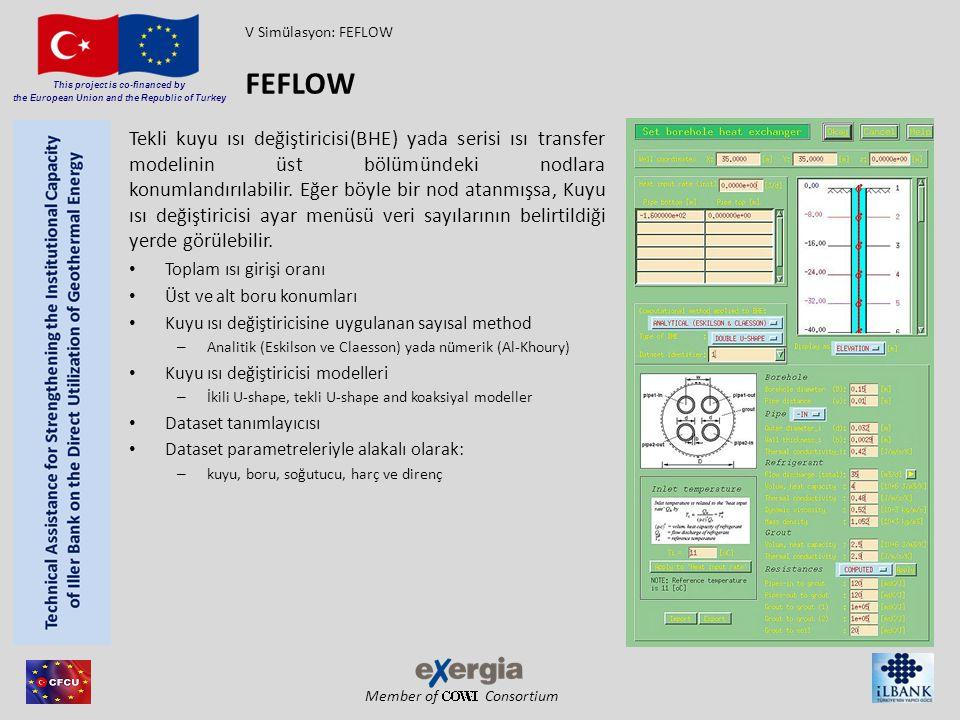 V Simülasyon: FEFLOW FEFLOW.