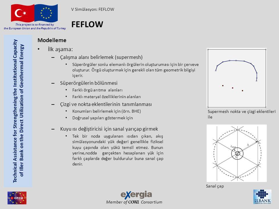 FEFLOW Modelleme İlk aşama: Çalışma alanı belirlemek (supermesh)
