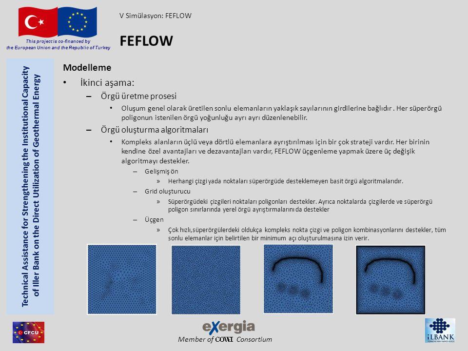 FEFLOW Modelleme İkinci aşama: Örgü üretme prosesi