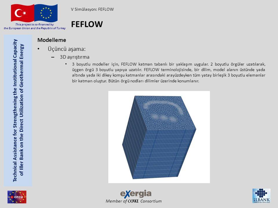 FEFLOW Modelleme Üçüncü aşama: 3D ayrıştırma V Simülasyon: FEFLOW