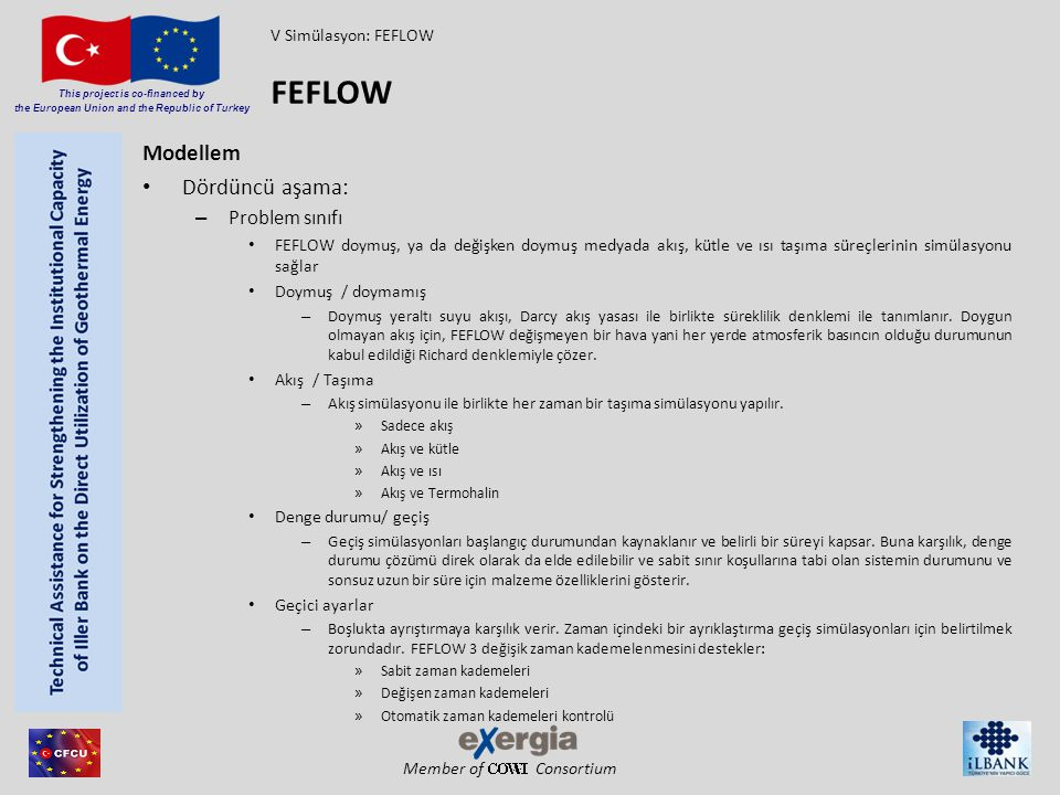 FEFLOW Modellem Dördüncü aşama: Problem sınıfı V Simülasyon: FEFLOW