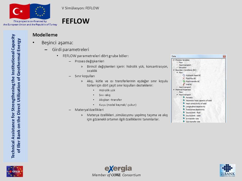 FEFLOW Modelleme Beşinci aşama: Girdi parametreleri