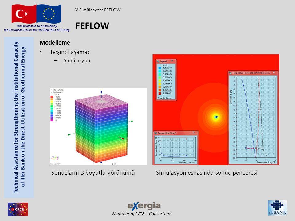 FEFLOW Modelleme Beşinci aşama: Sonuçların 3 boyutlu görünümü