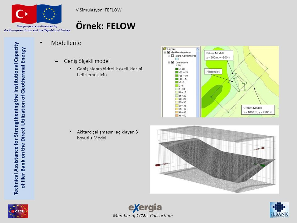 Örnek: FELOW Modelleme Geniş ölçekli model V Simülasyon: FEFLOW