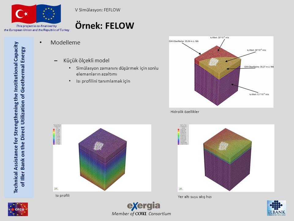Örnek: FELOW Modelleme Küçük ölçekli model V Simülasyon: FEFLOW