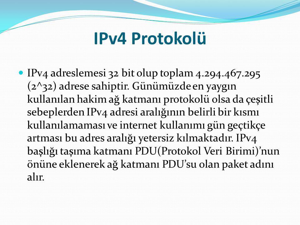 IPv4 Protokolü