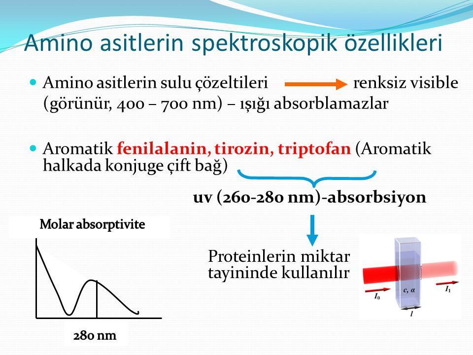 Amino asitlerin spektroskopik özellikleri