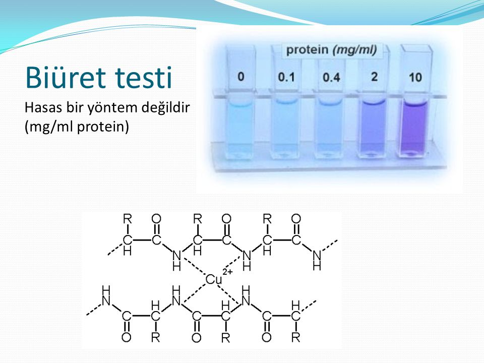 Biüret testi Hasas bir yöntem değildir (mg/ml protein)