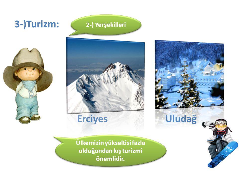 Ülkemizin yükseltisi fazla olduğundan kış turizmi önemlidir.