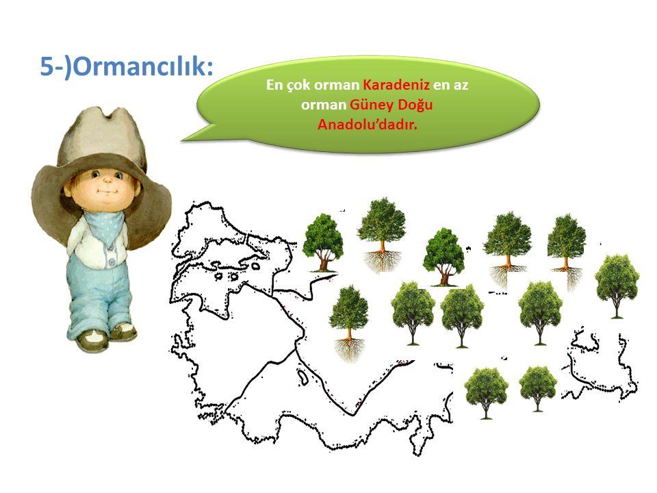 En çok orman Karadeniz en az orman Güney Doğu Anadolu'dadır.