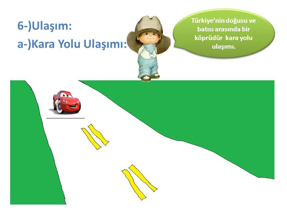 Türkiye'nin doğusu ve batısı arasında bir köprüdür kara yolu ulaşımı.