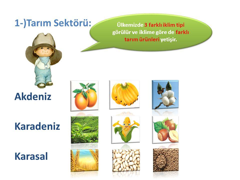 Akdeniz Karadeniz Karasal 1-)Tarım Sektörü: