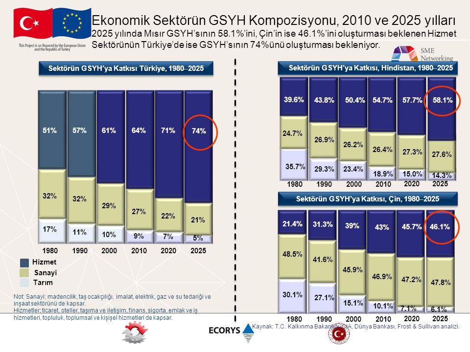 Ekonomik Sektörün GSYH Kompozisyonu, 2010 ve 2025 yılları 2025 yılında Mısır GSYH'sının 58.1%'ini, Çin'in ise 46.1%'ini oluşturması beklenen Hizmet Sektörünün Türkiye'de ise GSYH'sının 74%ünü oluşturması bekleniyor.