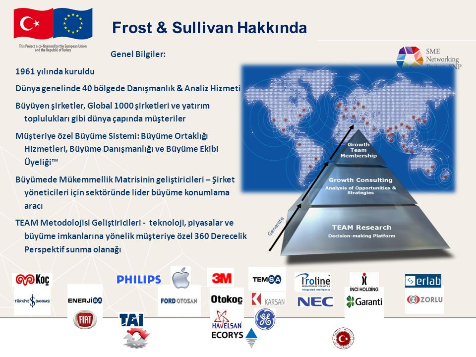 Frost & Sullivan Hakkında
